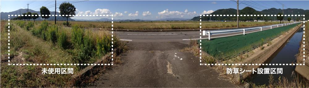 未使用区間、防草シート設置区間 比較