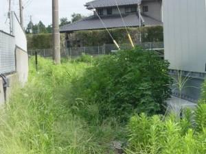 千葉県八街市太陽光発電施設(施工前)