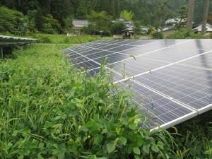 福井県鯖江市太陽光発電施設(施工前)
