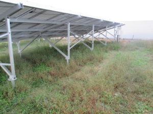 太陽光発電施設の雑草対策施工事例